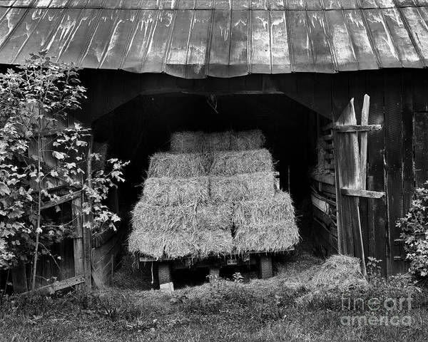 Photograph - Loaded Wagon by Patrick M Lynch
