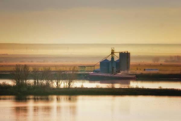 Photograph - Loading Grain by Albert Seger