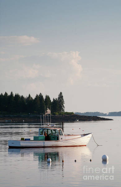 Photograph - Lobster Boat Anchored In Port Clyde, Maine #8537-v by John Bald