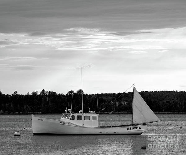 Photograph - Lobster Boat, Cundys Harbor #64721-bw by John Bald
