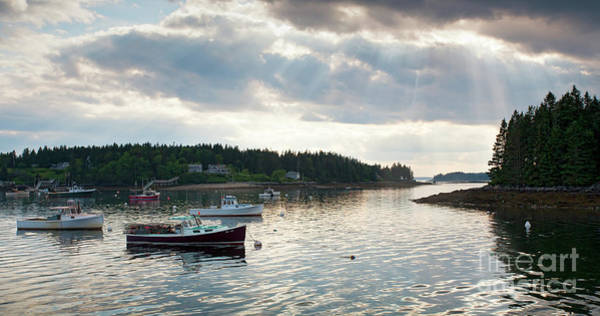 Photograph - Lobster Boats Anchored In Port Clyde, Maine #8492 by John Bald