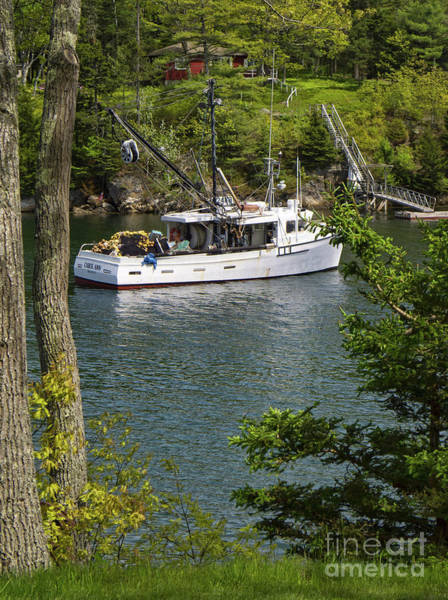 Photograph - Lobster Cove, Boothbay Harbor, Maine  -70447 by John Bald