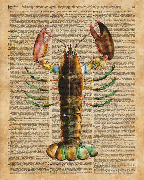 Bedding Digital Art - Lobster Crustacean Mediterranean Sealife Vintage Dictionary Art Collage by Anna W