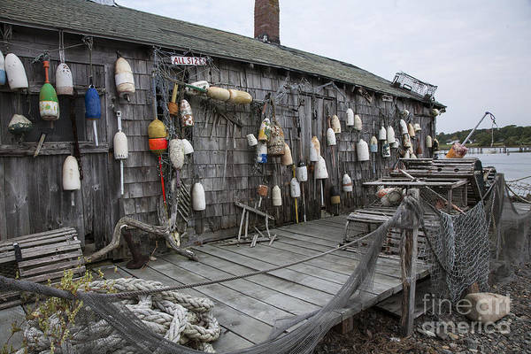 Wall Art - Photograph - Lobster Shack by Timothy Johnson