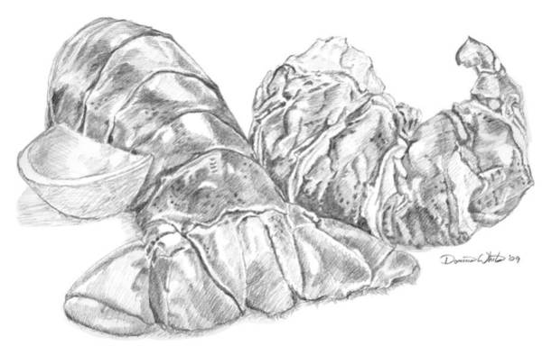 Drawing - Lobster Shell Drawing by Dominic White