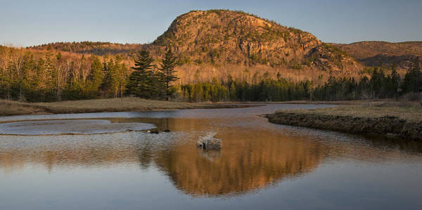 Photograph - Lobster Trap And Mountain by Darylann Leonard Photography