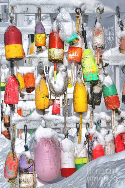 Wall Art - Photograph - Lobster Trap Buoys Collection In Snow by Olivier Le Queinec