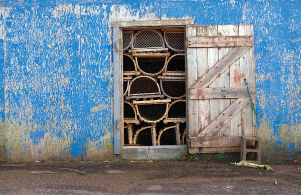 Photograph - Lobster Trap Storage-1 by Steve Somerville