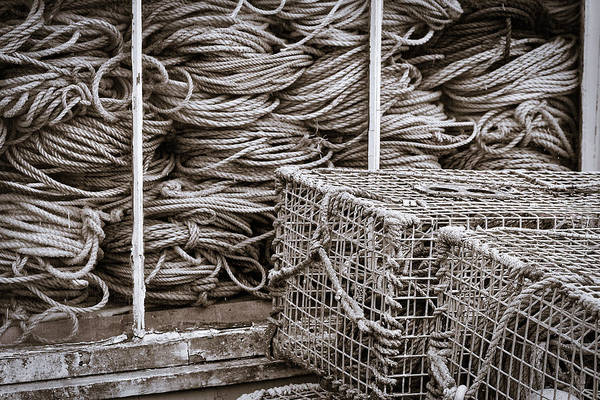 Photograph - Lobster Traps And Ropes #2 by Stuart Litoff