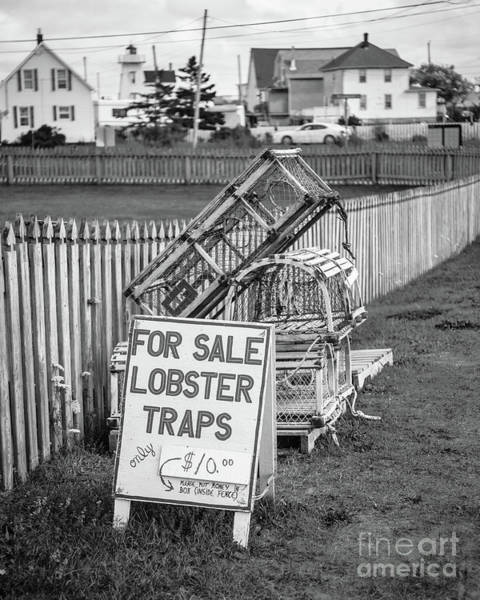 Lobster Photograph - Lobster Traps For Sale by Edward Fielding
