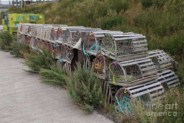 Photograph - Lobster Traps by Les Palenik