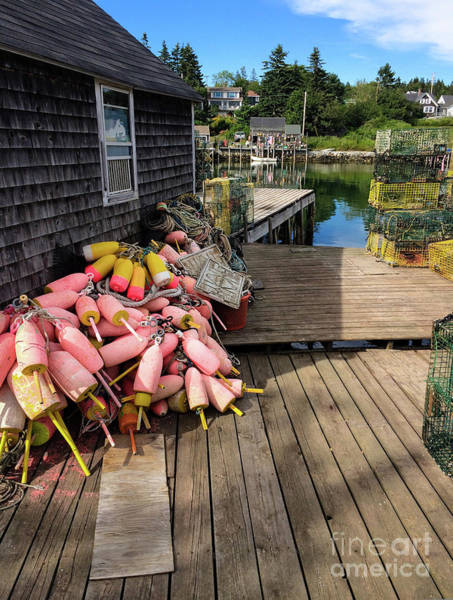 Photograph - Lobstering Gear, Port Clyde, Maine  -2044-ip by John Bald