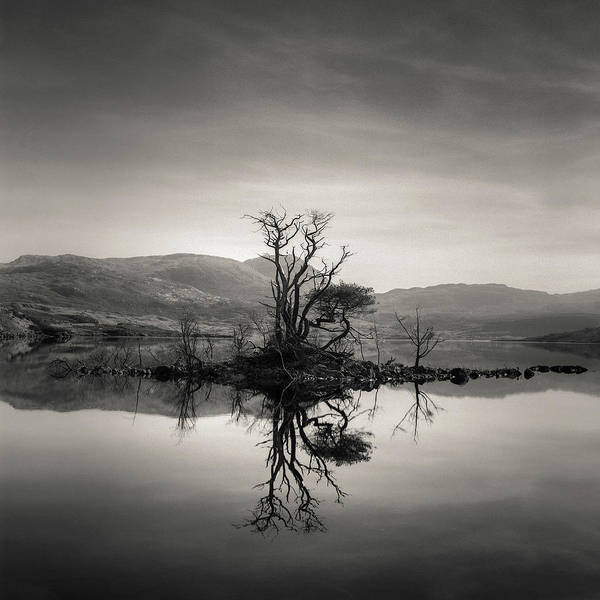 Wall Art - Photograph - Loch Assynt Reflection by Dave Bowman