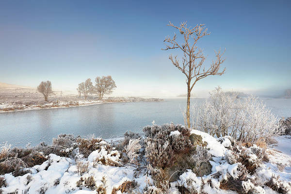 Photograph - Loch Ba Winter by Grant Glendinning