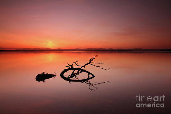 Photograph - Loch Leven Sunset by Maria Gaellman