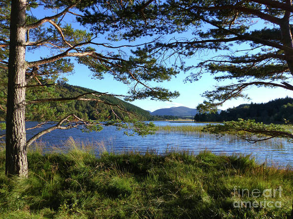Photograph - Loch Pityoulish - Autumn Evening by Phil Banks