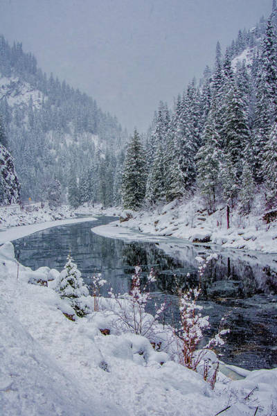 Highway 12 Wall Art - Photograph - Lochsa In Snow by Link Jackson