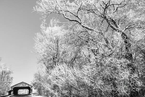 Photograph - Lockport Bridge Northwest Ohio by Michael Arend
