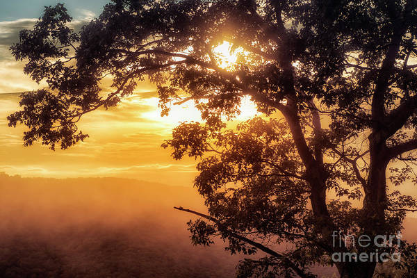 Photograph - Loft Mountain Overlook Sunset by Thomas R Fletcher