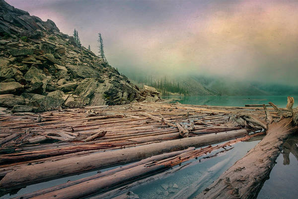 Wall Art - Photograph - Log Jam At Moraine Lake Banff National Park Canada by Joan Carroll