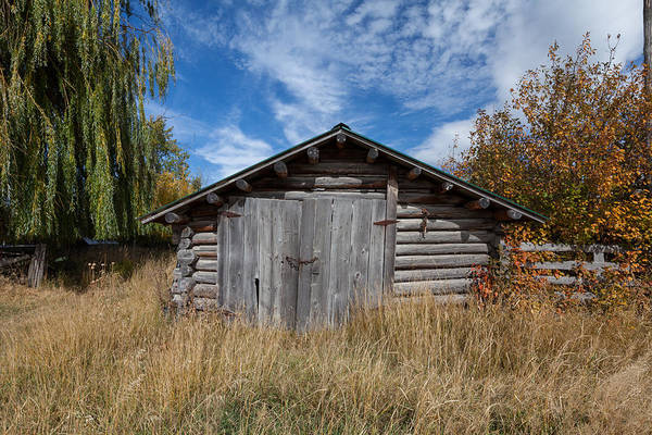 Photograph - Log Shed by Fran Riley