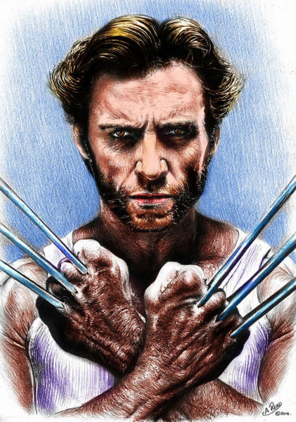 Wolverines Drawing - Logan Adamantium Version by Andrew Read