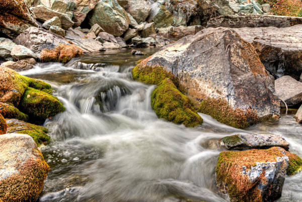 Logan Creek, Montana 2 Art Print