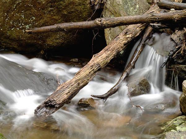 Photograph - Logs In Stream by Jim DeLillo