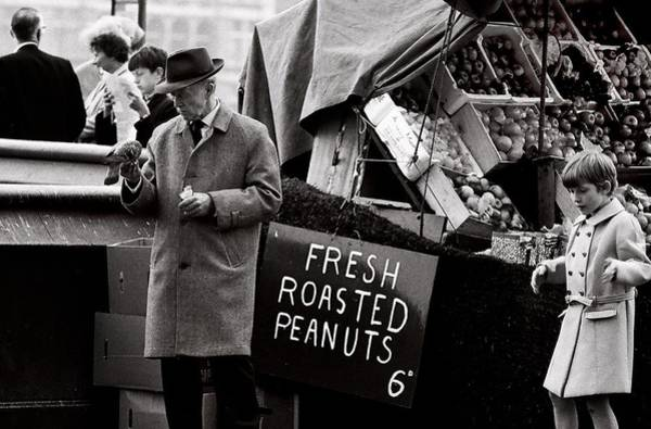 Songbird Photograph - London 's Peanuts  (film) by Didier Guibert
