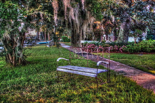 Photograph - Lone Bench In Fairhope, Alabama by Michael Thomas