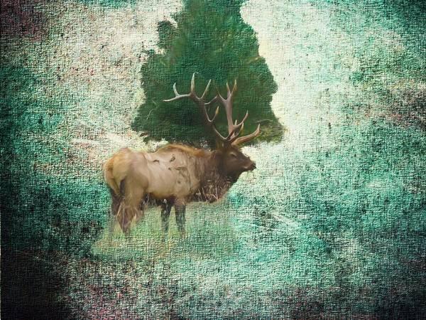 Digital Art - Lone Bull Elk by Rusty R Smith