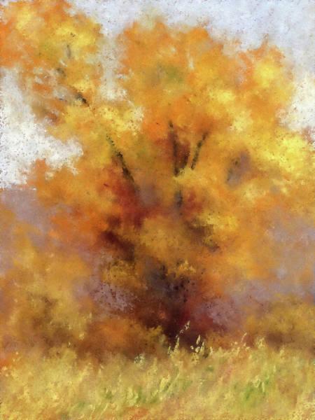 Digital Art - Lone Cottonwood Dwp by David King