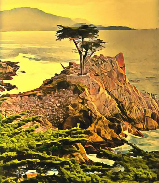 Photograph - Lone Cypress Monterey by Barbara Snyder