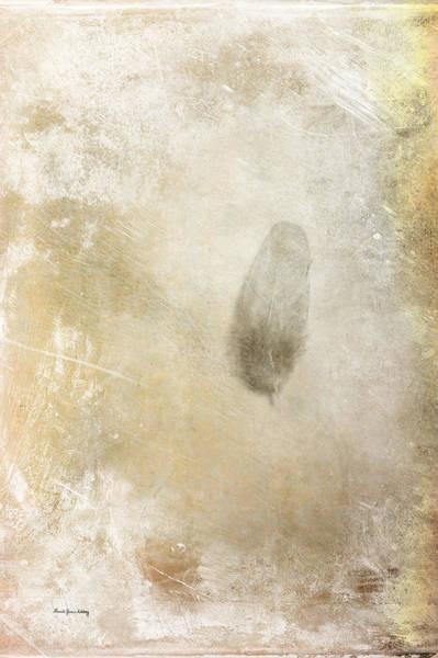 Photograph - Lone Feather by Randi Grace Nilsberg