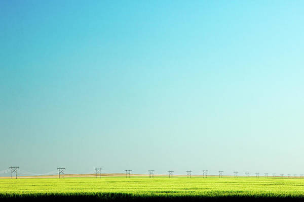Photograph - Lone Line Of Poles by Todd Klassy