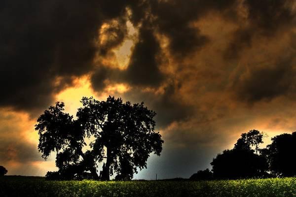 Photograph - Lone Sky by David Matthews