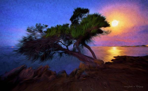 Lone Tree On Pacific Coast Highway At Moonset Art Print