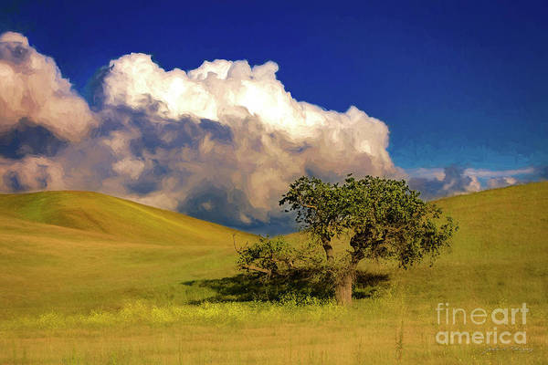 Lone Tree With Storm Clouds Art Print