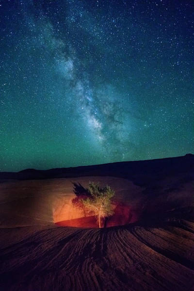 Wall Art - Photograph - Lone Tree With The Milky Way. by Johnny Adolphson