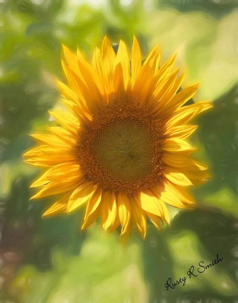 Digital Art - Lonely But Lovely Sunflower by Rusty R Smith