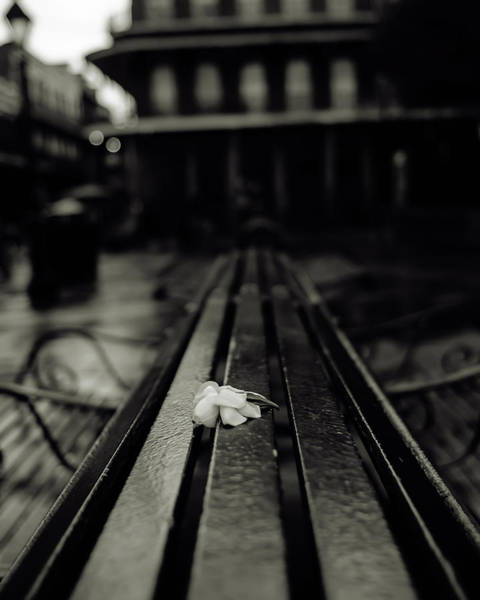 Photograph - Lonely by Chris Coffee