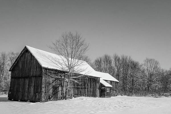 Photograph - Lonely Grey Barn by Kendall McKernon