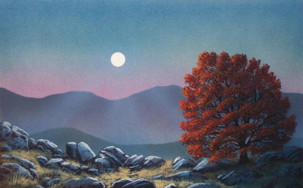 Painting - Lonely Sentinel by Frank Wilson