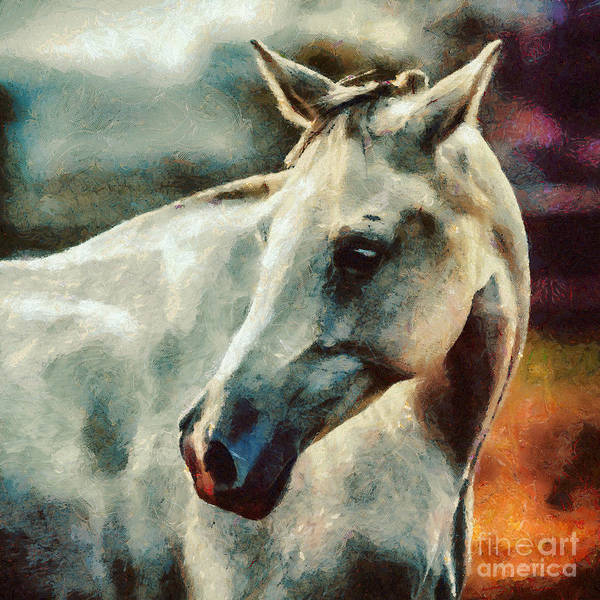 Painting - Lonely White Horse Painting by Dimitar Hristov