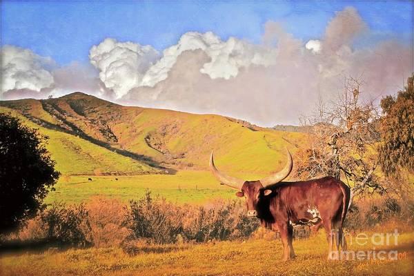 'lonesome Longhorn' Art Print by Gus McCrea