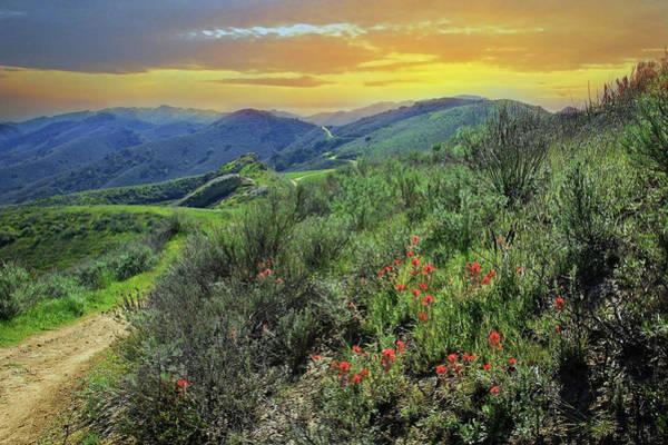 Photograph - Long Canyon Sunset by Lynn Bauer
