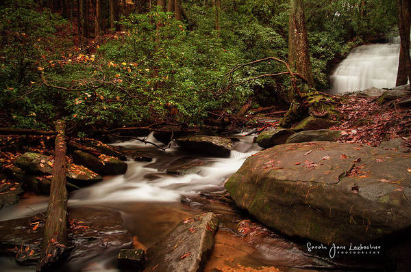 Wall Art - Photograph - Long Creek Falls by Sarah-jane Laubscher