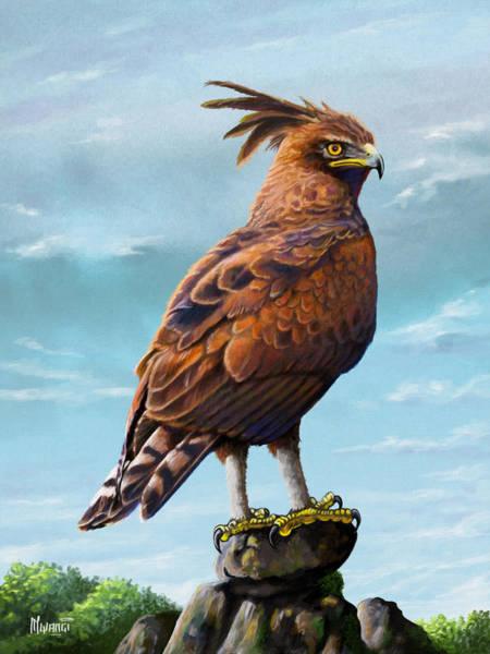 Vertebrate Painting - Long Crested Eagle by Anthony Mwangi
