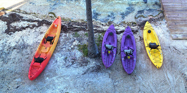 Wall Art - Photograph - Long Key Kayaks by Betsy Knapp