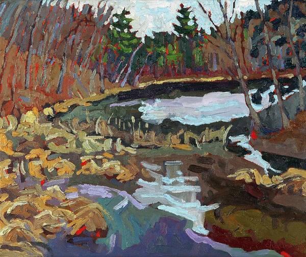 Long Shadow Painting - Long Lake Marsh by Phil Chadwick
